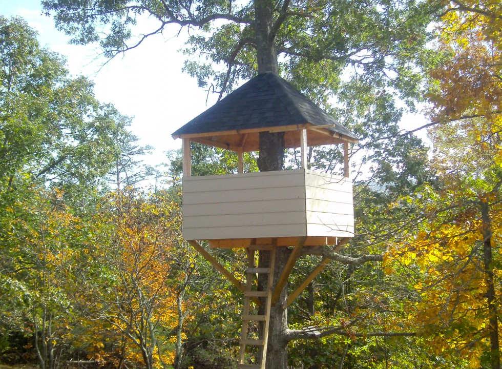 Custom Tree House Built in Shenandoah Valley by Valley Builders LLC.